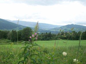 Gausdal View
